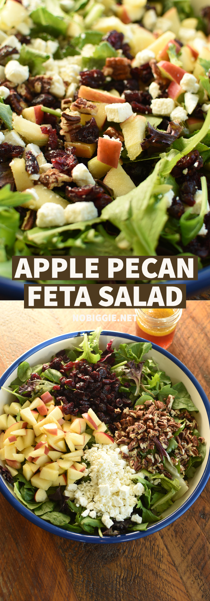 apple pecan feta salad | NoBiggie.net